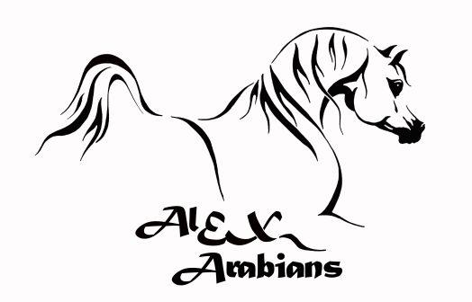 Arabian AE aa