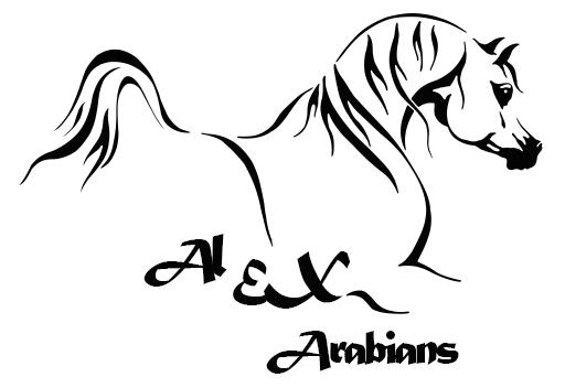 Rediseño Logo Al Ex Arabians ICONO